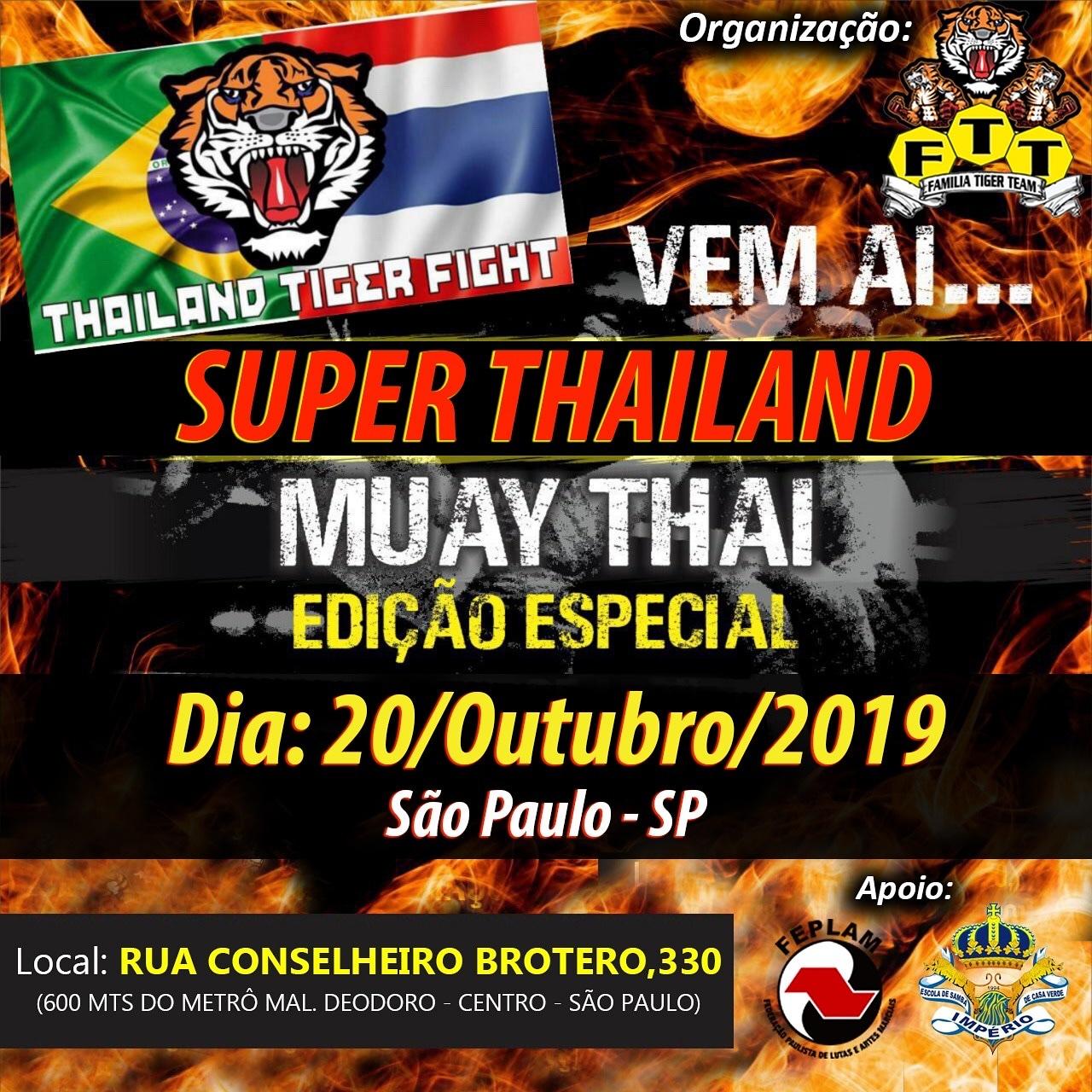Thailand Tiger Fight